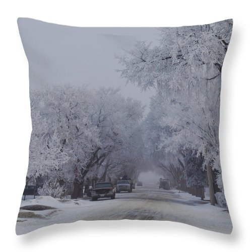 Nature Throw Pillow featuring the photograph The Street Near The Streat Where I Live by Shelly Fox