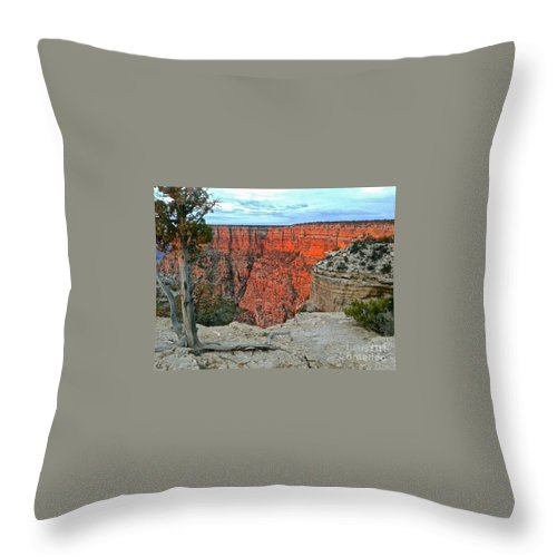 Grand Canyon Throw Pillow featuring the photograph The Sun Shines On The Canyon by Christy Gendalia