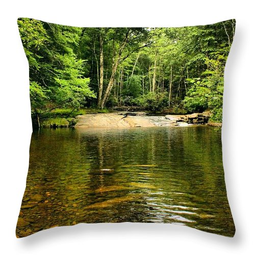 Landscape Throw Pillow featuring the photograph The Swimming Hole by Robert McCulloch