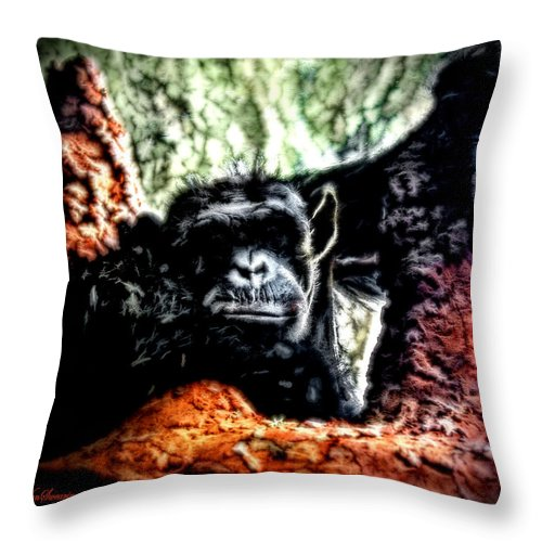 Zoo Throw Pillow featuring the photograph The Thinker by Lucy VanSwearingen