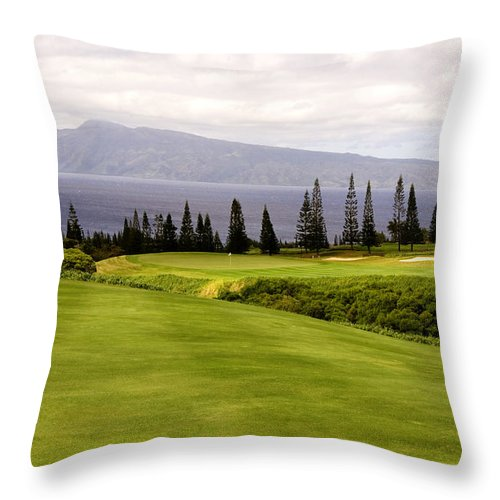 Golf Throw Pillow featuring the photograph The View by Scott Pellegrin