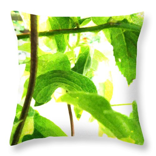 White Throw Pillow featuring the photograph The Vine Light by Steve Taylor