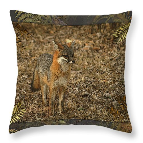 Fox Throw Pillow featuring the photograph The Visitor by TnBackroadsPhotos