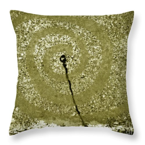 Abstract Throw Pillow featuring the photograph The Wand by Fei A