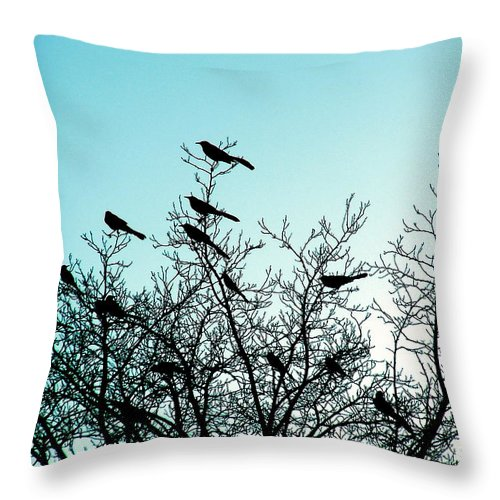Sunset Throw Pillow featuring the photograph The Watch Tower by M Pace