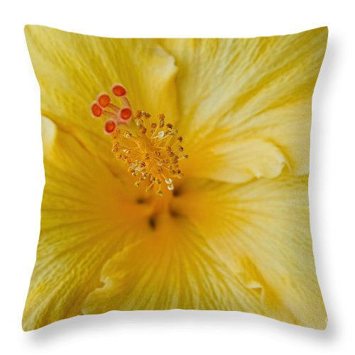 Aloha Throw Pillow featuring the photograph The Whispers Of Heaven by Sharon Mau