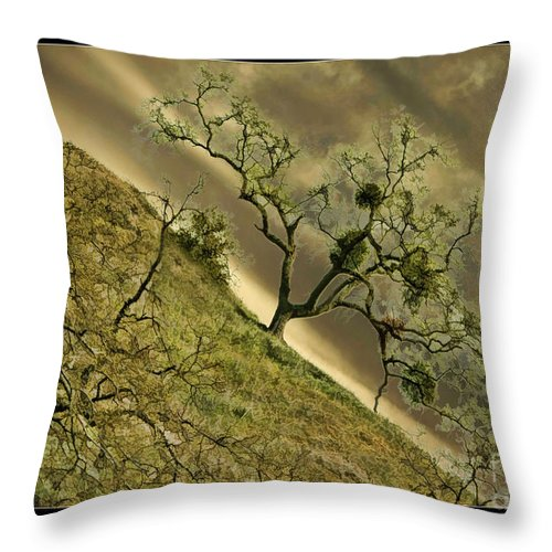 Art Photography Throw Pillow featuring the photograph The Wicked Tree by Blake Richards