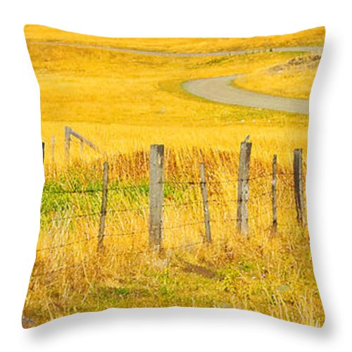 Country Landscape Throw Pillow featuring the photograph The Winding Road The Crooked Fence And The Bluebird by Theresa Tahara