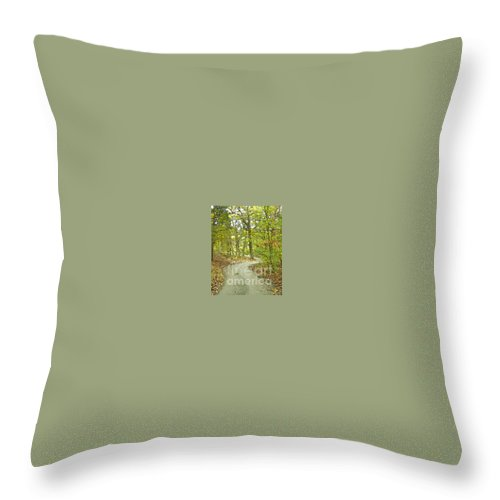 Golf Throw Pillow featuring the photograph The Winding Trail by Lee Owenby
