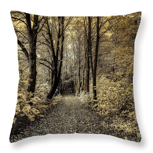 Clearing Throw Pillow featuring the photograph The Woods by FL collection