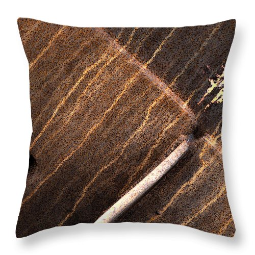 Rust Throw Pillow featuring the photograph Theory Of Rain by The Artist Project