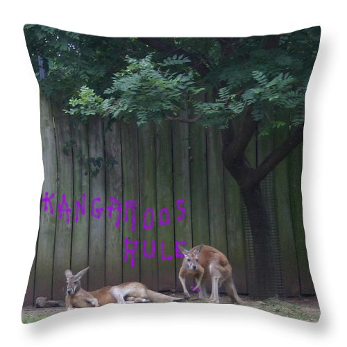 Kangaroo Throw Pillow featuring the photograph They Will Never Think It Was Us.. by Nina Fosdick