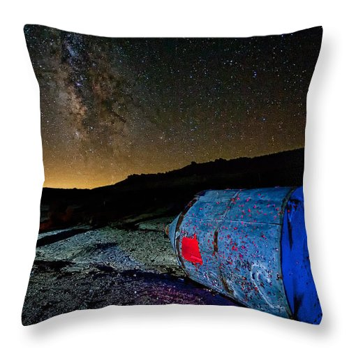 California Throw Pillow featuring the photograph They've Landed by Peter Tellone