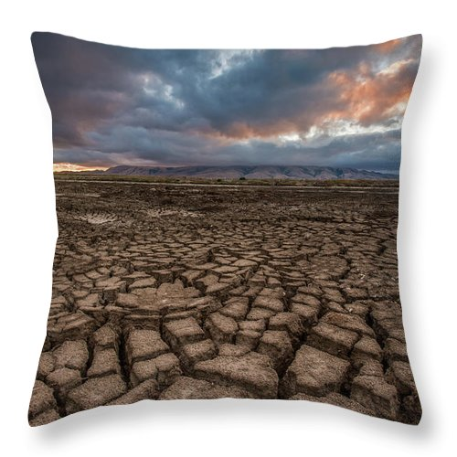Tranquility Throw Pillow featuring the photograph Thirsty by Aaron Meyers