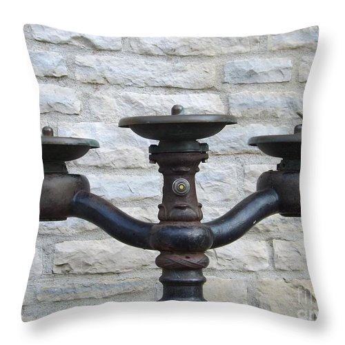 Water Throw Pillow featuring the photograph Thirsty For More by Sara Raber