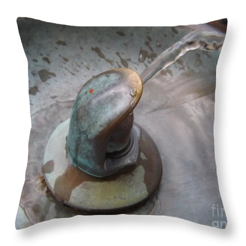 Water Throw Pillow featuring the photograph Thirsty by Sara Raber