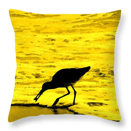 Florida Throw Pillow featuring the photograph This Beach Belongs To Me by Ian MacDonald