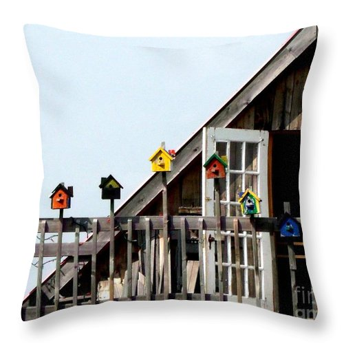 House Throw Pillow featuring the photograph This House Is For The Birds by Gail Matthews