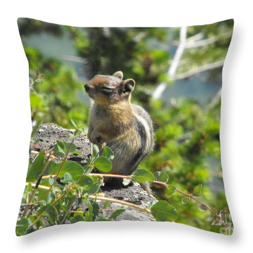Animals Throw Pillow featuring the photograph This Is The Life by Brandi Maher