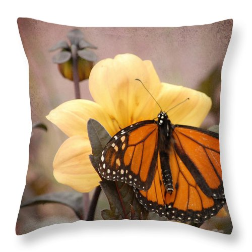 Nature Throw Pillow featuring the photograph This Moment by Lena Wilhite