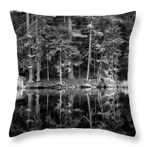 Water Throw Pillow featuring the photograph This World Of Ours by Greg DeBeck