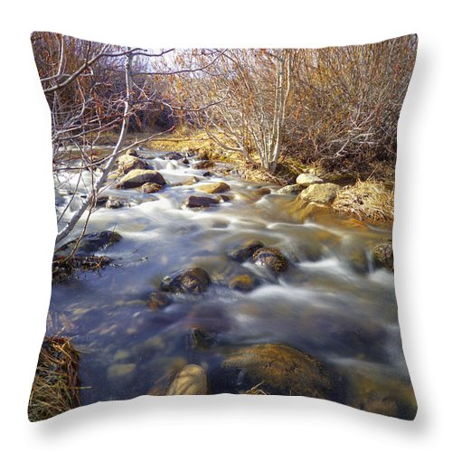 Thomas Throw Pillow featuring the photograph Thomas Creek by Dianne Phelps