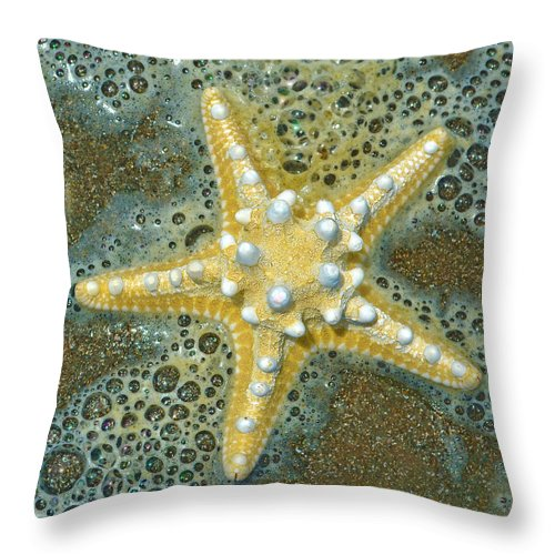 Thorny Starfish Throw Pillow featuring the photograph Thorny Starfish by Sandi OReilly