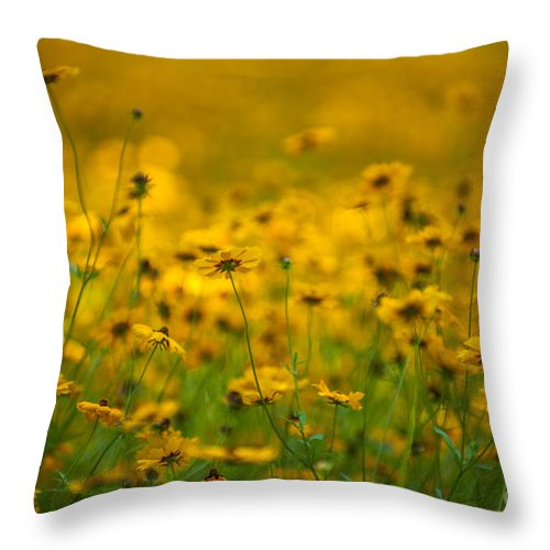 Flowers Throw Pillow featuring the photograph Thoughts Of Spring by Dale Powell
