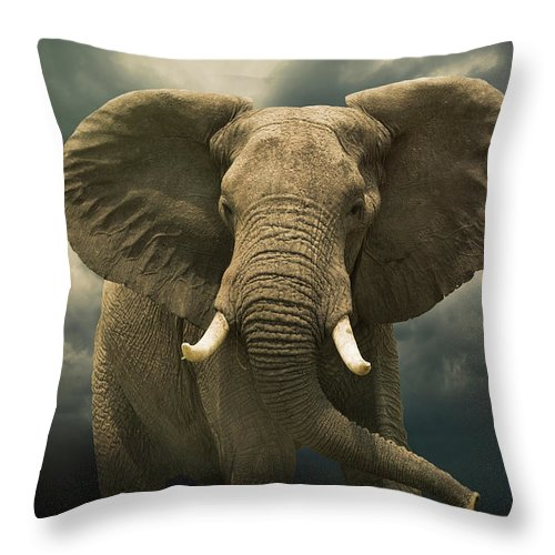 Kenya Throw Pillow featuring the photograph Threatening African Elephant Under by Buena Vista Images