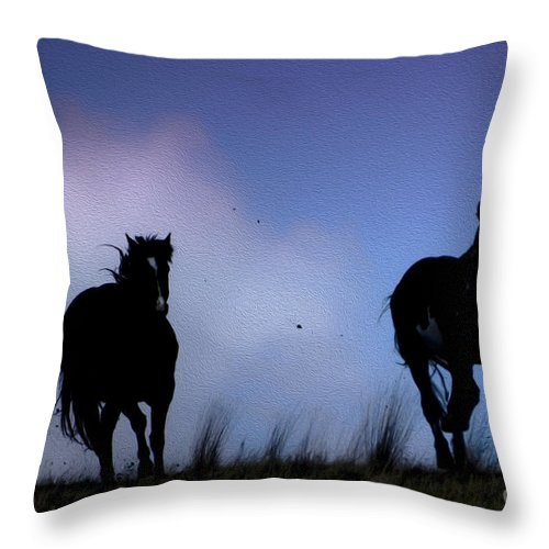 Horses Throw Pillow featuring the photograph Three Amigos by Wildlife Fine Art