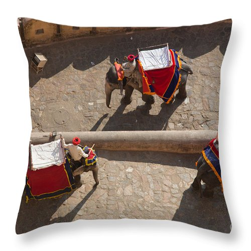 Amber Fort Throw Pillow featuring the photograph Three Elephants At Amber Fort by Inge Johnsson