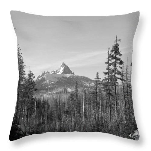 Image Picture Photo Photograph Three 3 Fingered Jack Cascade Mountains Oregon Peak Snow Timber Trees Fir Pine Black And White High Country Volcano Volcanic Range Pacific Northwest Fire Forest Panorama Dead Trees Tree Plug Throw Pillow featuring the photograph Three Fingered Jack by Scott Carda