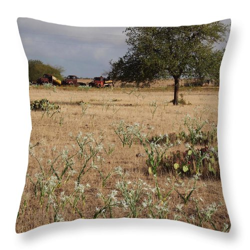 Three Throw Pillow featuring the photograph Three Old Pals by Valerie Loop