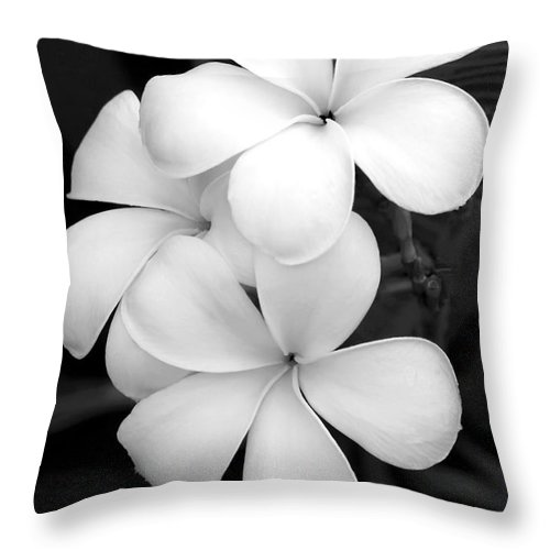 Macro Throw Pillow featuring the photograph Three Plumeria Flowers In Black And White by Sabrina L Ryan