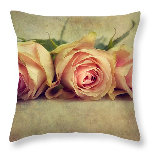 Roses Throw Pillow featuring the photograph Three Times A Lady by Claudia Moeckel
