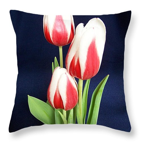 Three Tulips Throw Pillow featuring the photograph Three Tulips by Deb Schense