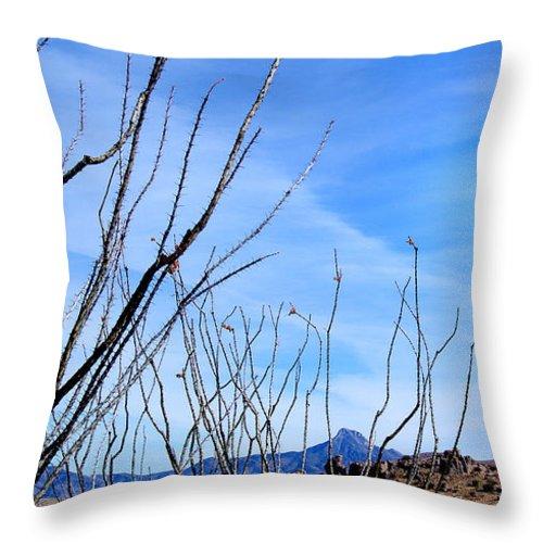 Photography Throw Pillow featuring the photograph Through The Garden by Vicki Pelham