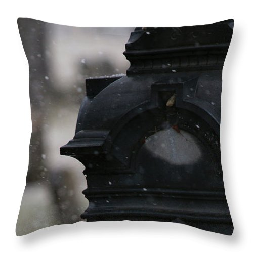 Cemetery Throw Pillow featuring the photograph Through The Seasons by Linda Shafer