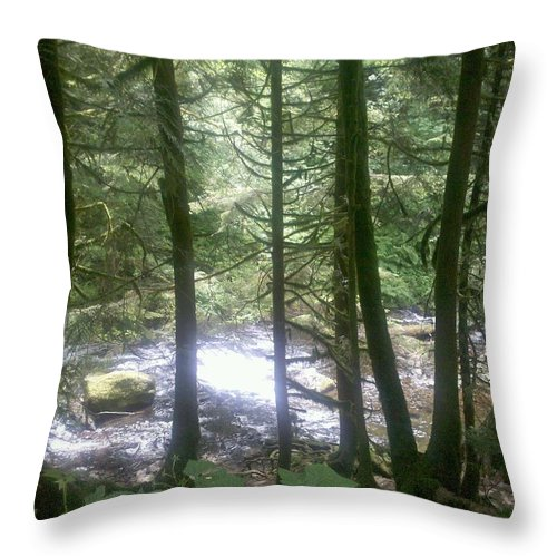 Waterfall Throw Pillow featuring the photograph Through The Trees by Heather L Wright