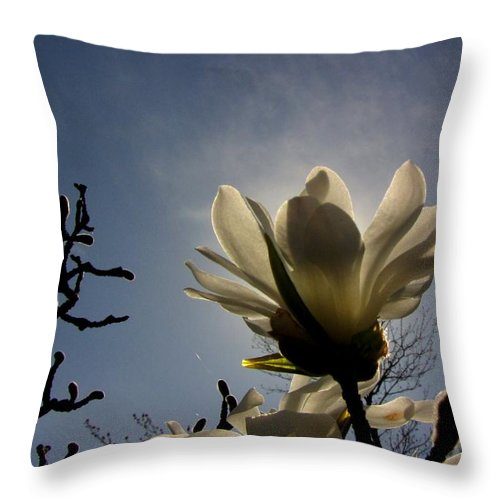 Flower Throw Pillow featuring the photograph Thru The Flowers 2 by Sarah Houser