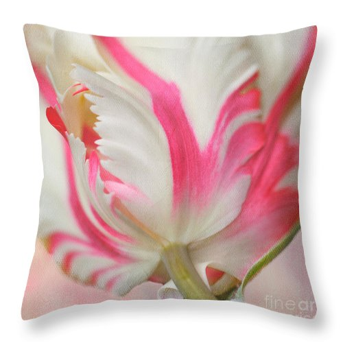 Bloom Throw Pillow featuring the photograph Tickle Me Pink by Beve Brown-Clark Photography
