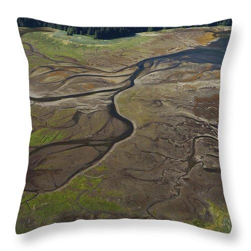 530682 Throw Pillow featuring the photograph Tidal Flat Inside Passage Alaska by Hiroya Minakuchi