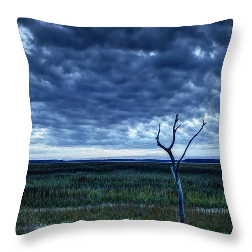 Artistic Throw Pillow featuring the digital art Tidal Marsh View by Phill Doherty