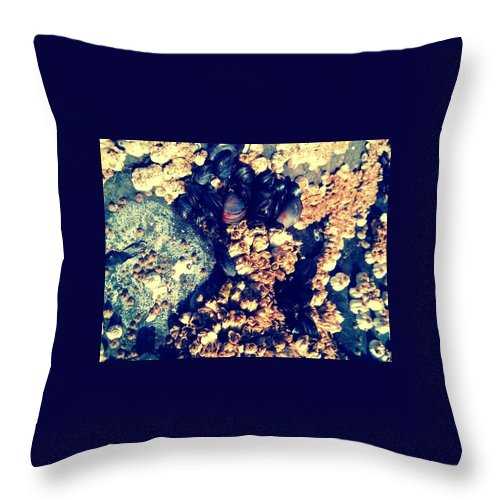 Ocean Throw Pillow featuring the photograph Tide Life by Barbara Christensen