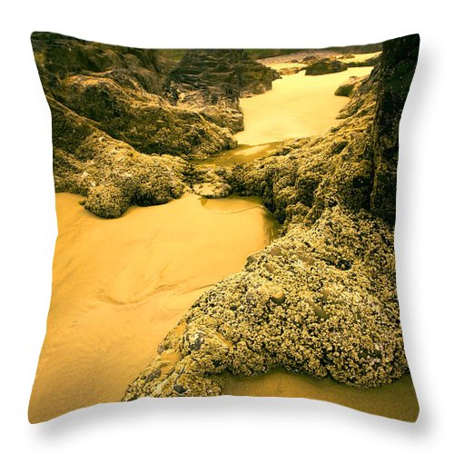 Tidepools Throw Pillow featuring the photograph Tidepools From Above by Bonnie Bruno