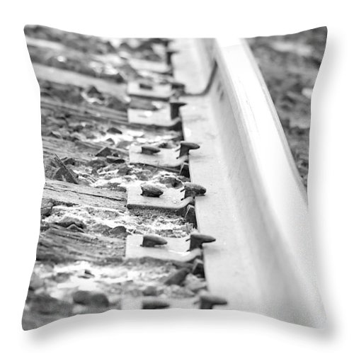 Lisa Knechtel Throw Pillow featuring the photograph Ties That Bind Us by Lisa Knechtel