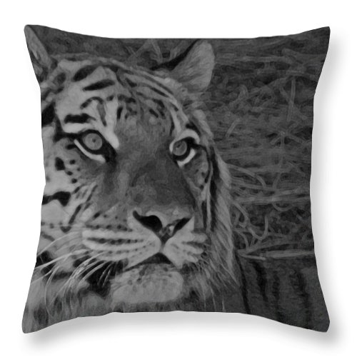 Tiger Throw Pillow featuring the photograph Tiger Bw by Ernie Echols