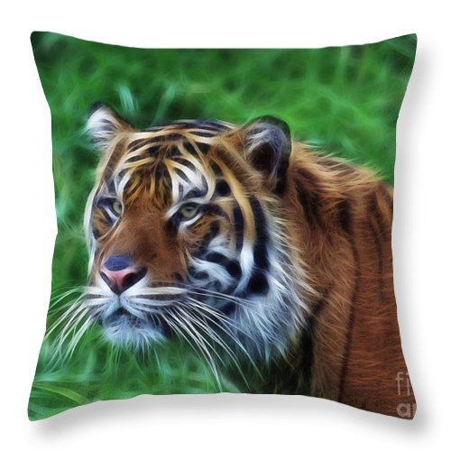 Wildlife Throw Pillow featuring the photograph Tiger Profile by Steve McKinzie