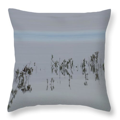 Blue Throw Pillow featuring the photograph Time To Reflect by Robin Webster