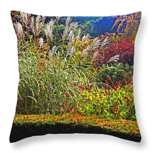 Seat Throw Pillow featuring the photograph Time To Relax by Nishanth Gopinathan